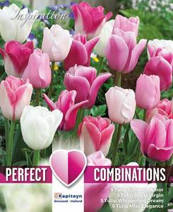 Bilde av Perfect Combinations - Rosa og hvit blanding - 20 stk