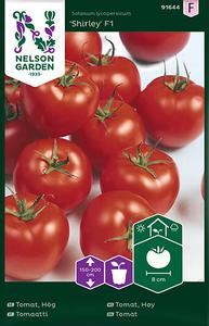 Bilde av Tomat, Drivhus- 'Shirley' F1 - Solanum lycopersicum