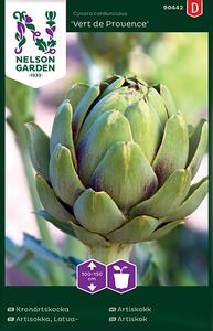 Bilde av Artisjokk 'Vert de Provence' - Cynara scolymus