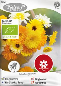 Bilde av Ringblomst blandede farger - Organic