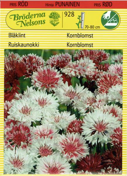 Kornblomst 'Classic Romantic' - Centaurea cyanus