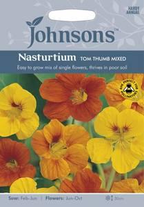Bilde av Blomkarse 'Tom Thumb Mixed' - Tropaeolum majus