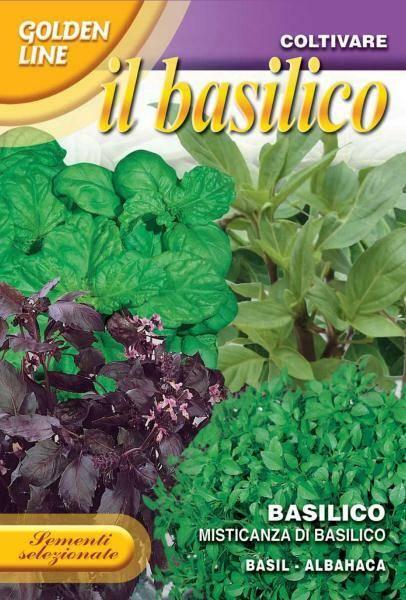 Basilikum 'Di Basilico' - Ocimum basilicum