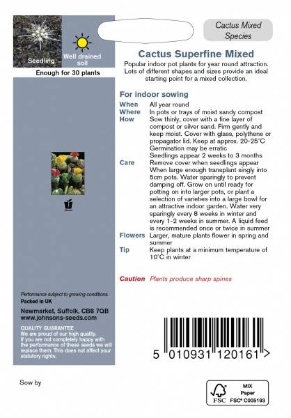Kaktus 'Superfine Mixed'