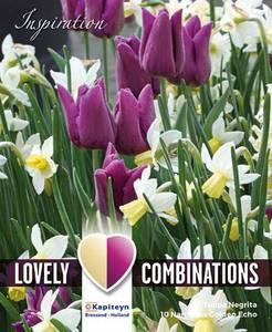 Bilde av Perfect Combinations - Tulipan og narsisskolleksjon - Lilla