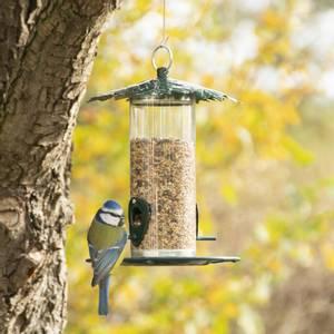 Bilde av Fuglemater, blad, for frø