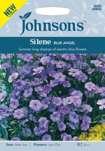 Bilde av Smelle, rose- 'Blue Angel' - Silene coeli-rosa