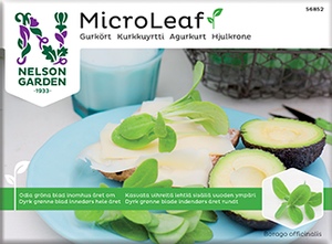 Bilde av Micro Leaf, Agurkurt