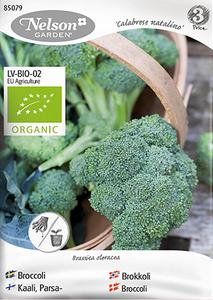 Bilde av Brokkoli 'Calabrese Natalino' - Brassica oleracea, Organic