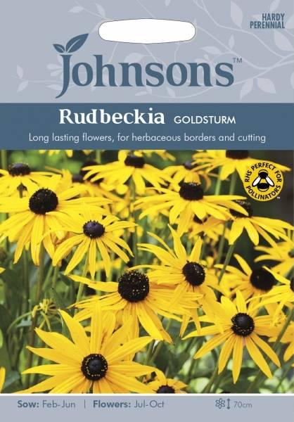 Praktsolhatt 'Goldsturm' - Rudbeckia fulgida