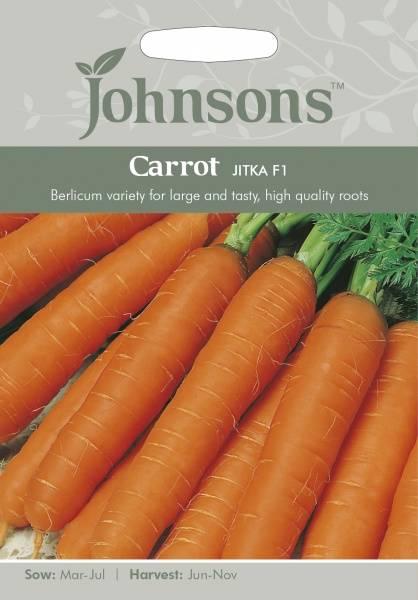 Gulrot 'Jitka' - Daucus carota