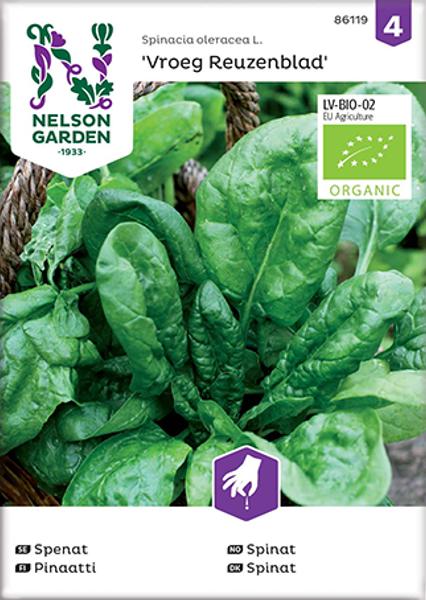 Spinat 'Vroeg Reuzenblad' - Spinacia oleracea, Organic
