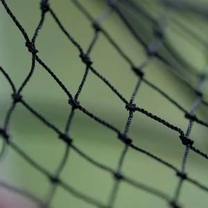 Bilde av HH Nett - Fuglenetting 2 x 5 m