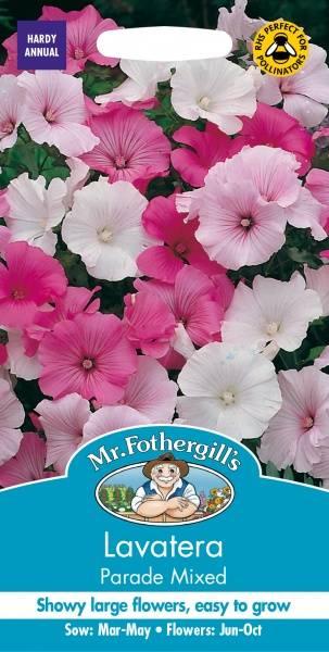Hagepoppelrose 'Parade Mixed' - Lavatera trimestris