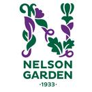 Nelson Garden frø