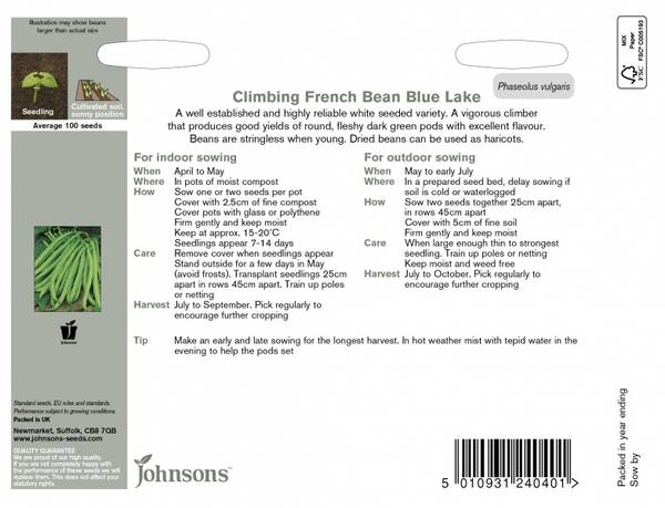 Bønne 'Blue Lake' - Stangbønne