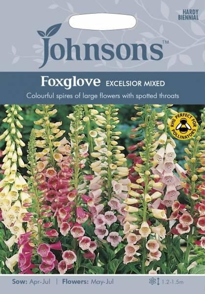 Revebjelle 'Excelsior Mixed' - Digitalis purpurea