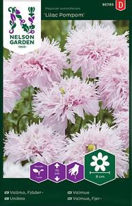 Bilde av Valmue, pion- 'Lilac Pompom' - Papaver somniferum