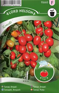 Bilde av Tomat, Friland- ampel 'Romello'
