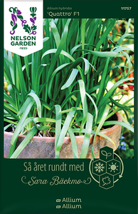 Bilde av Løk 'Quattro' F1 - Allium x hybrida